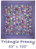 Triangle Frenzy quilt